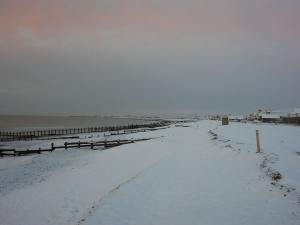 Snow covered beach at dawn